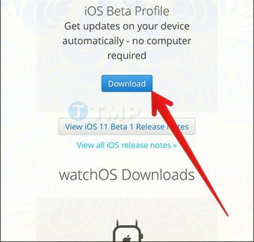 cach tai ios 11 beta khong can tai khoan developer 2