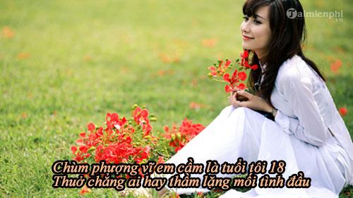 loi bai hat phuong hong 2