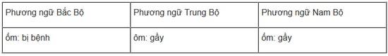 soan bai chuong trin hdia phuong phan tieng viet