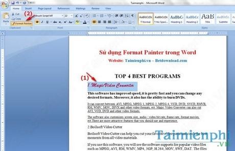 Cách sử dụng Format Painter trong Word, Excel 1