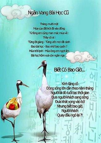loi ngo bao tuong